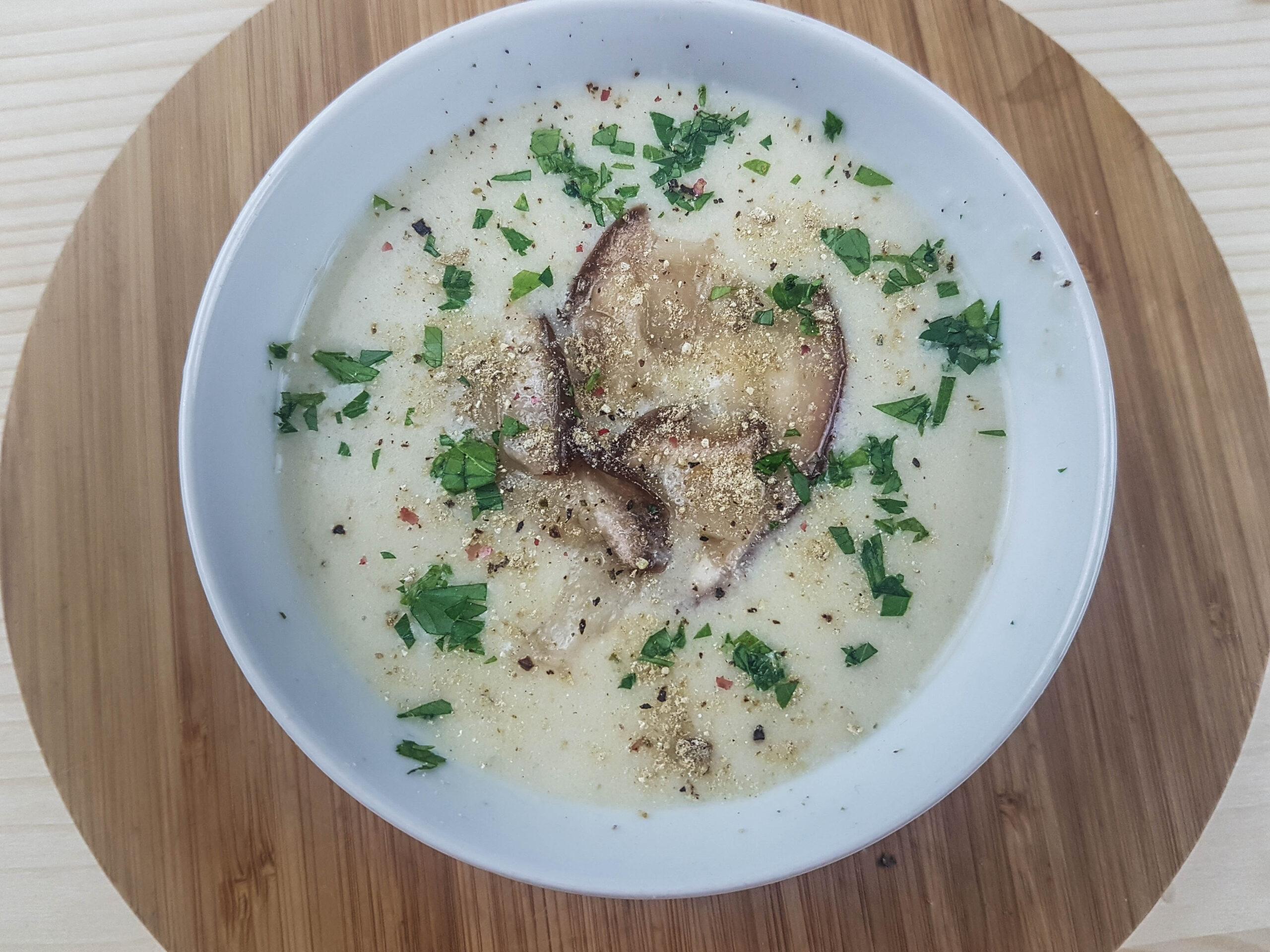 boletus mushrooms soup