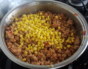 quick chicken mince recipes